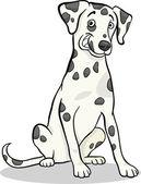 Dalmatian purebred dog cartoon illustration — Stock Vector