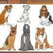 Purebred dogs cartoon illustration set - Stock Vector