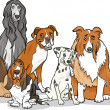 Cute purebred dogs group cartoon illustration — Imagen vectorial