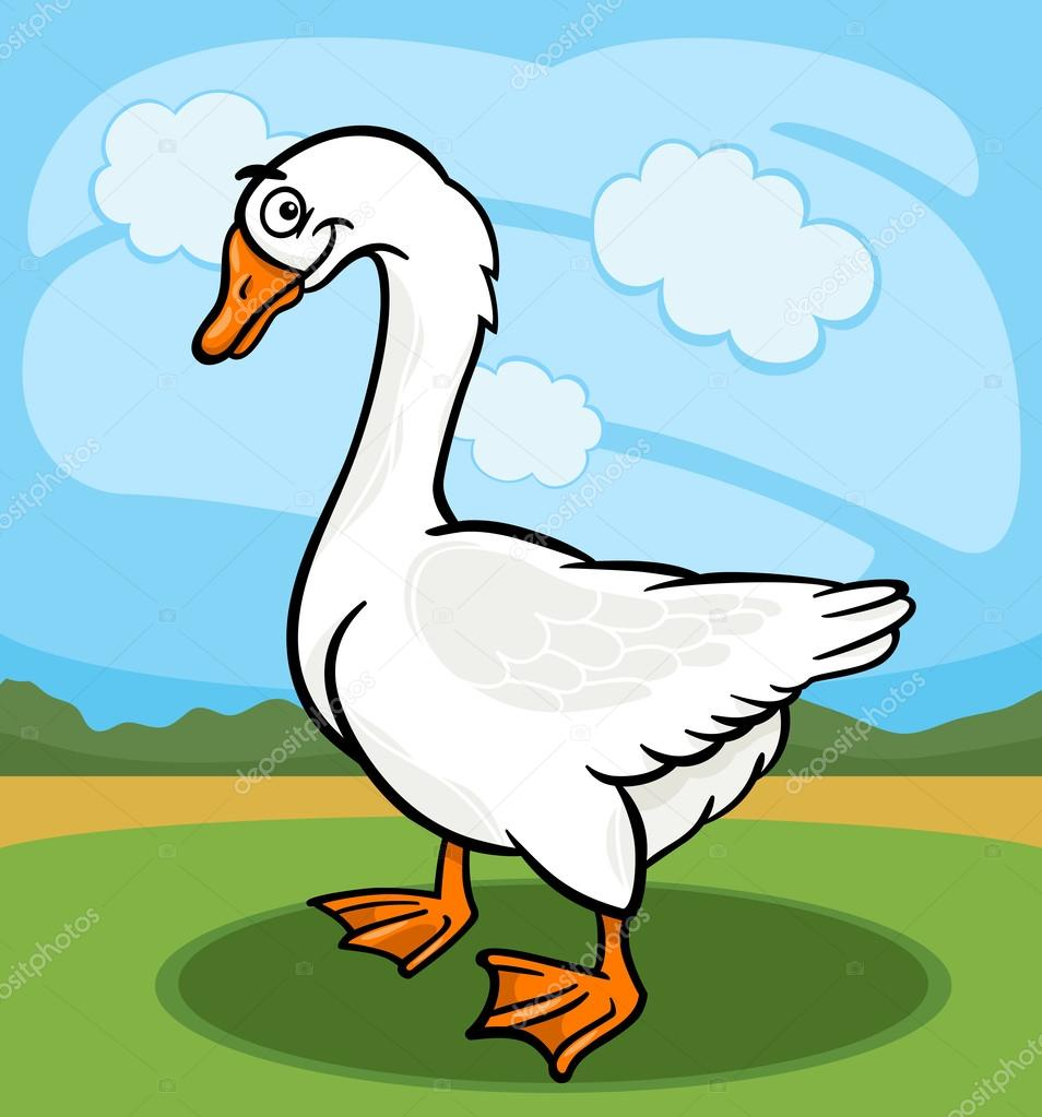 Washington Duck Hunting Guides amp Goose Hunting Guides