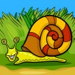 Snail mollusk cartoon illustration — Stock Vector