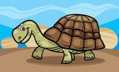 Ilustración de la historieta divertida tortuga — Vector de stock