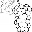 Grapes illustration for coloring book — Stock Vector
