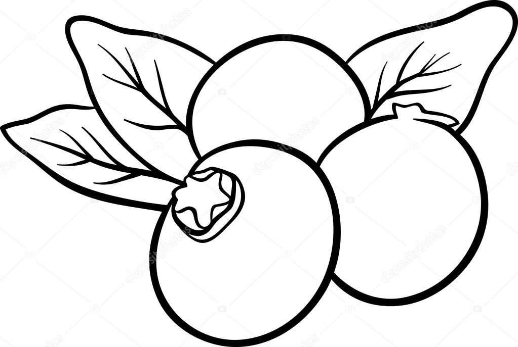 myrtille coloring pages - photo#11