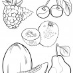 Cartoon fruits set for coloring book — Stock Vector #26310453