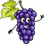 Funny blue grapes fruit cartoon illustration — Stock Vector