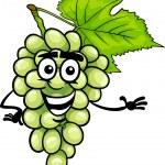 Funny white grapes fruit cartoon illustration — Stock Vector