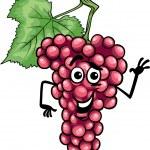 Funny red grapes fruit cartoon illustration — Stock Vector