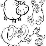 Cartoon Animals for Coloring Book — Stock Vector #36605889
