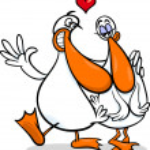 Ducks in love cartoon illustration — Stock Vector #37998745