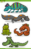 Reptiles and amphibians cartoon set — Stock Vector
