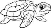 Sea turtle coloring book — Stock Vector