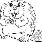 Beaver animal cartoon coloring page — Stock Vector #47805617