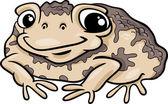 Toad amphibian cartoon illustration — Stock Vector