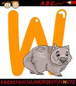 Letter w for wombat cartoon illustration — Stock Vector