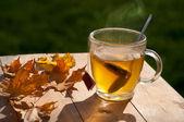 Hot tea — 图库照片