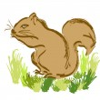 Cartoon squirrel — Stock Photo