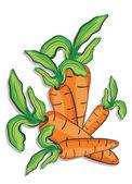 Fresh carrots — Stock Vector