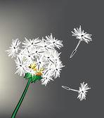Beautiful dandelion — Stock Vector