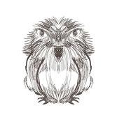 Hand drawn bird — Stock Vector