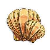 Scallop seashell — Stock Vector