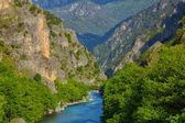 Aoos River — Stock Photo