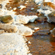 Salty stream near Lopatari — Stock Photo