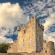 Ross castle - Stock Photo