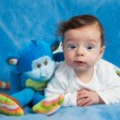 Portrait of 4 months old baby boy — Stock Photo #44335547