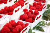 Raspberries in a bowl closeup — Stock Photo