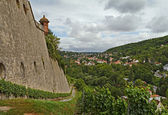 View on Wurzburg from Marienberg fortress, Germany — Stock Photo