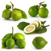 Five picture of lemon — Stock Photo