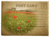 Postcard in English language — Stock Photo