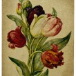 Old card flower — Stock Photo