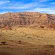 Timnnational geological park of Israel. — Stock Photo #37078347