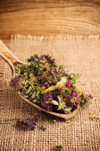 Herbal tea. — Stock Photo