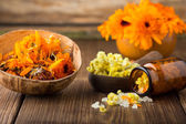 Calendula homeopathic. — Stock Photo