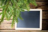 Spruce background. — Stock Photo