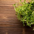 Stock Photo: Thyme.