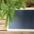 Spruce background. — Stock Photo