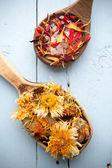 Homeopathic medicine. — Stock Photo