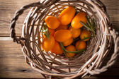 Kumquat. — Stock Photo