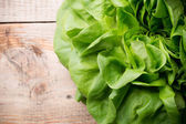 Lettuce.  — Stock Photo