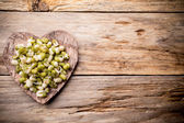 Sprouts. — Stock Photo