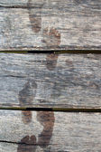 Wooden planks with prints of bare feet — Stock Photo