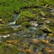 Flowing creek 4 — Stock Photo