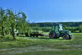 Apple orchard tractor — Stock Photo