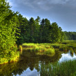 Scarborough marsh 63 — Stock Photo