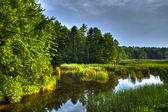 Scarborough marsh 63 — Stockfoto