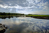 Scarborough marsh 49 — Stock Photo